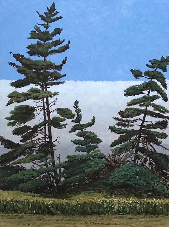 Devine-Trees